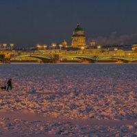 Вечерняя прогулка по Неве :: Valeriy Piterskiy