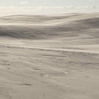 Мокрая  пустыня ... :: CHAIKA '