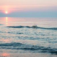 Одинокий всплеск на закате :: Александр Степовой