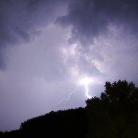 молния над сосняком :: Алексей Хижняк