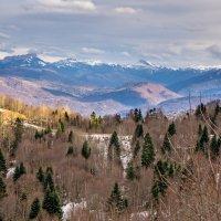 Снег на вершинах :: Ольга Решетникова