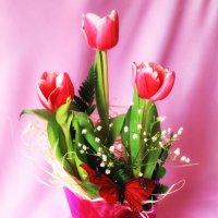 Тюльпаны :: Мария Вологжанина