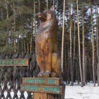 Тамбовский Волк :: Андрей Черников