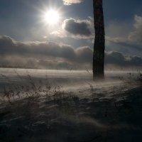 ...март...метель... :: Андрей Гр