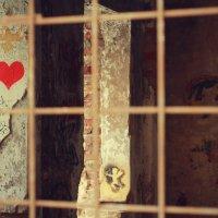 про любовь :: Alena Kramarenko