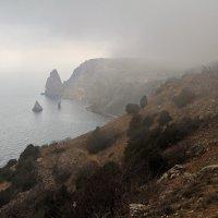 И снова туман... :: Марина Дегтярева
