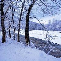 Снегопад в Даховской :: Ольга Решетникова