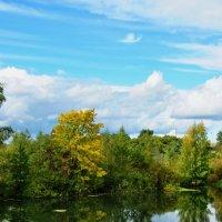 лето на речке :: Михаил Карпов