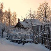 Февральским утром :: Николай Белавин