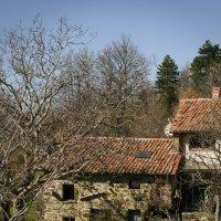 Casa Toscana :: Iren Kolt