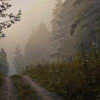 снова лес за туманами :: Алексей Карташев