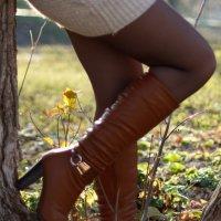 сапожки на ножках :: Юлия Золотарева