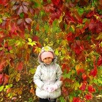 Осенняя мозайка :: ольга хадыкина