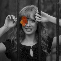 Осенний променад :: Alena Kramarenko