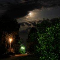Лунная ночь :: Александр Килямов