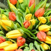 Весна :: Lesya V