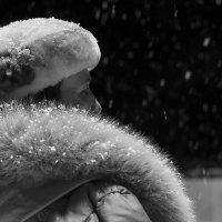 Снегопад :: Елена Васильева
