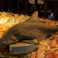 Акулий стейк! :: Oleg Gendelman