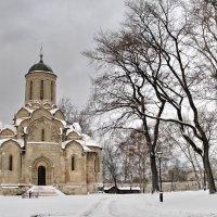 Спасский собор зимой :: Александр Сивкин