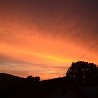 Оранжеве небо :: Віталій Павук