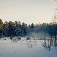 зима :: Татьяна Калашникова