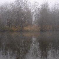 Осень. Туман :: Сергей Комков