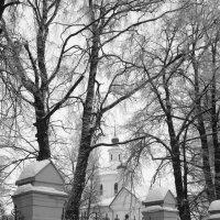 с.Филипповское, Владимирская область :: Мария Бойко