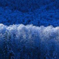 зима :: Марьяна Золотова