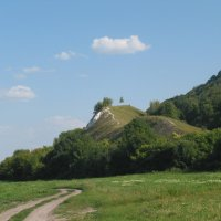 Вид на гору у деревни Костомарово :: Максим Красиков