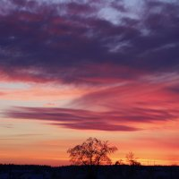 Зимний закат :: Виктория Левина