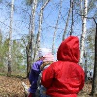 лесные гномики :: кейт соло