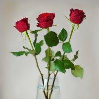 Три розы... :: Юлия Назаренко