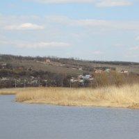 Мартовский пейзаж... :: Тамара (st.tamara)