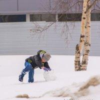 Рождение снеговика (23 марта 2015 г) :: Oxana Kilina