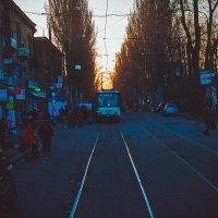 Evening street :: Алексей Бачурский