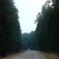 Дорога в никуда........... :: Кристина Cоль