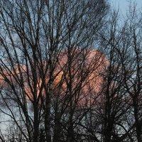 Розовые облака :: Наталья Березко
