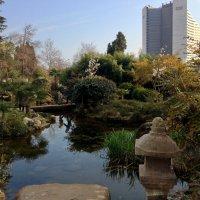 Японский сквер в  Сочи :: Tata Wolf
