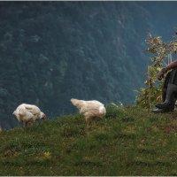 На краю земли...Гималаи,Непал!!! высота 2900м. :: Александр Вивчарик