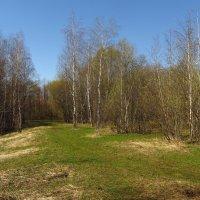 Img_0387 - Май-2013 :: Андрей Лукьянов