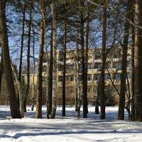 Санаторий в лесу :: Дмитрий Конев