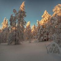 Вечер в январе :: vladimir