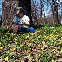 Весна :: Наталья Дивинец