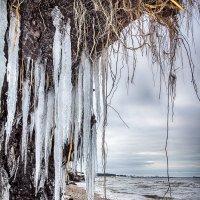 весна на море :: Jurij Ginel