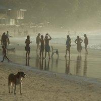 Вечер на пляже :: Dmitri Danilenko