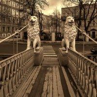 Львиный мостик :: Валентин Яруллин