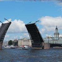 2008 год Праздник речного флота :: tipchik