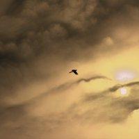 Там где рождается солнце :: Владимир Марков