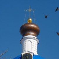 начали бить колокола и птицы поднялись на крыло.... :: Galina Leskova