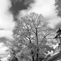 Осень в крепости :: Михаил Лобов (drakonmick)